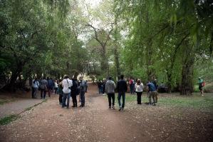 InstaMeet at Emmarentia Park, Johannesburg, South Africa